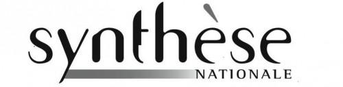 Synthèse logo.JPG